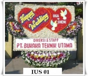 IUS 01