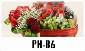 PBB17